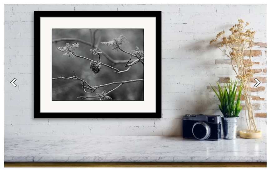 Holiday sales 2020, gift ideas, home decor, framed wall art, nature photography