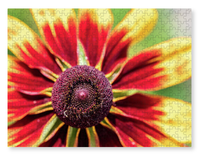 Holiday sales 2020, gift ideas, puzzles, flower photography