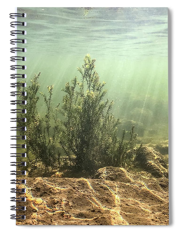 Holiday sales 2020, gift ideas, notebooks, underwater photography